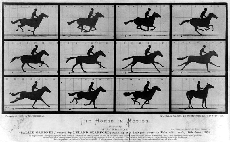 "Muybridge: ""The Horse In Motion."" Imagem de domínio público -The Library of Congress Prints and Photographs Division."